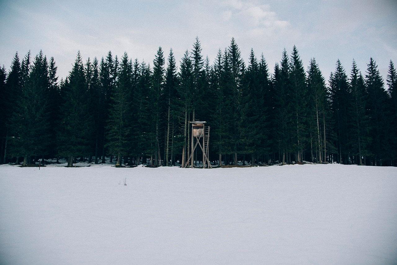 Охота в Калужской области
