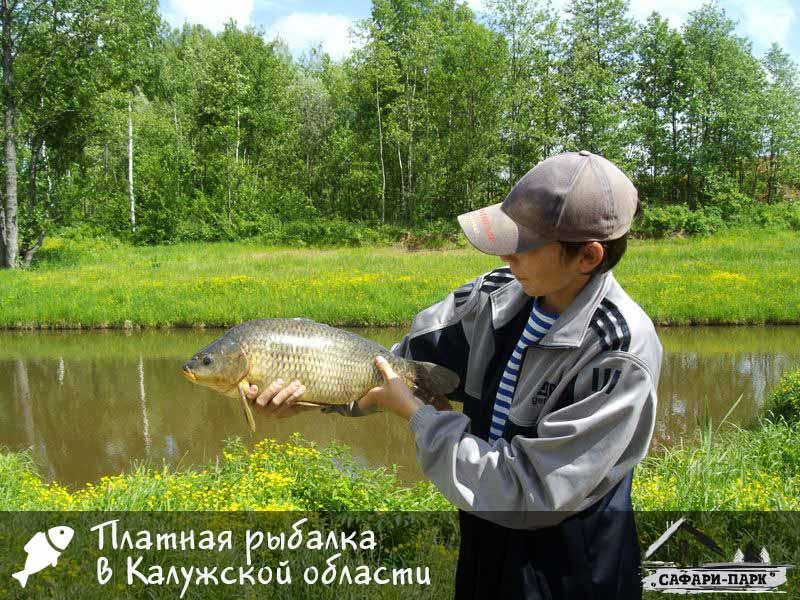 Платная рыбалка в Калужской области - Сафари Паркъ
