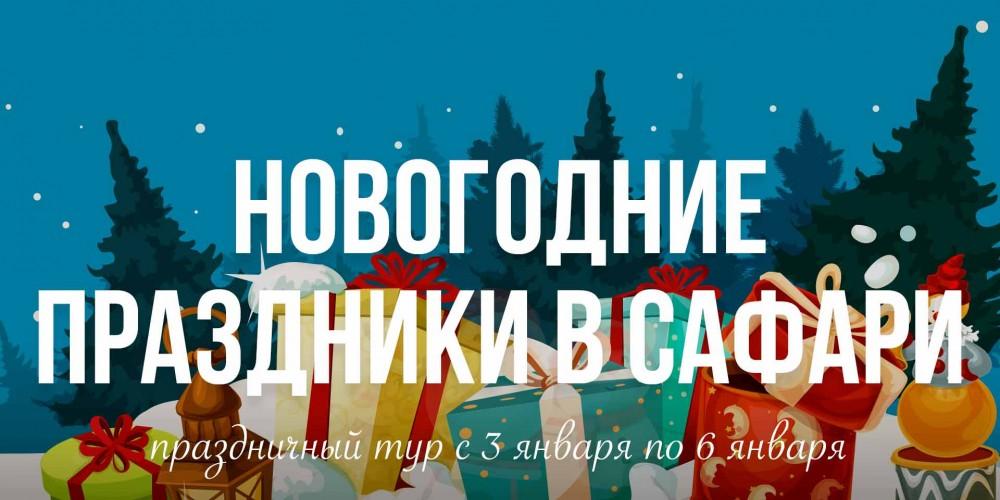 http://vlesu.ru/wp-content/uploads/2019/08/NovogodniePrazdniki-2020-news-new.jpg