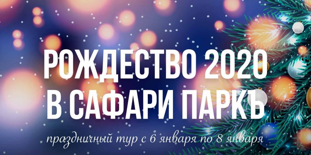 http://vlesu.ru/wp-content/uploads/2019/08/rojdestvo-2020-news-new.jpg