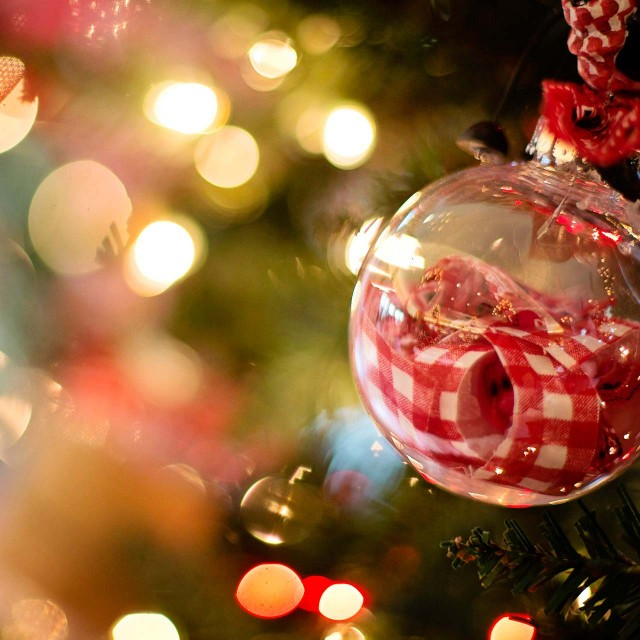 Рождество 2016 в Сафари Паркъ