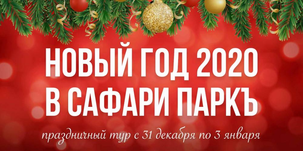 http://vlesu.ru/wp-content/uploads/2019/08/NoviyGod-2020-news-new.jpg