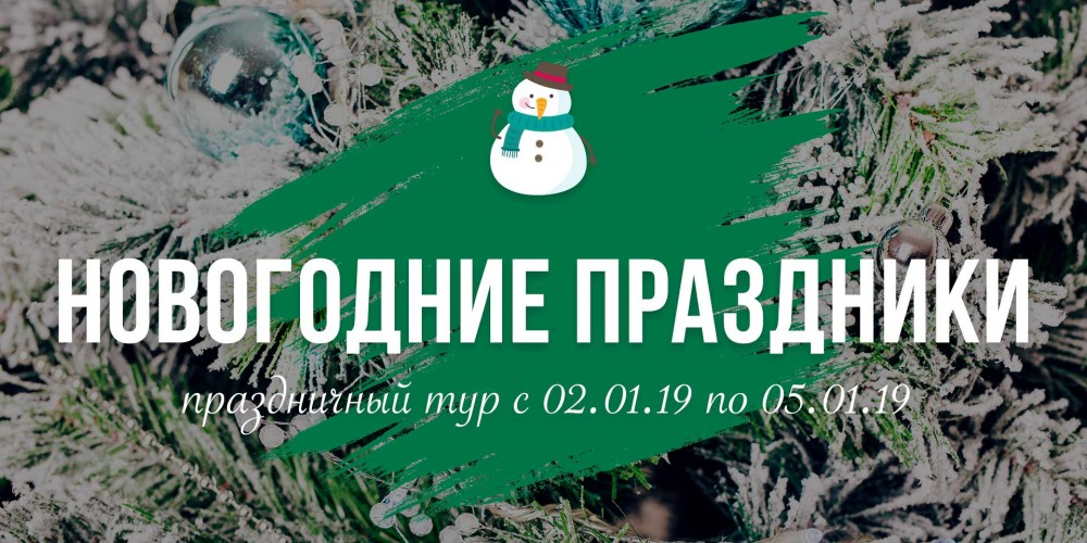 http://vlesu.ru/wp-content/uploads/2018/09/NovogodniePrazdniki-news-2019.jpg
