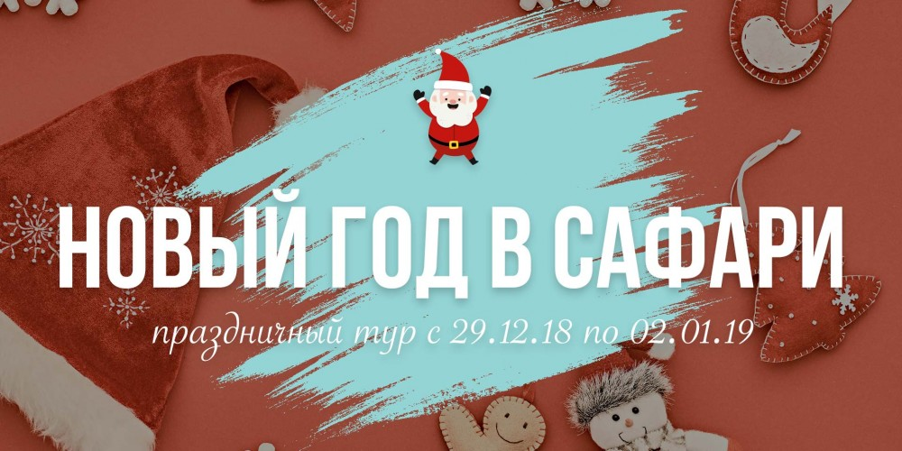 http://vlesu.ru/wp-content/uploads/2018/09/NoviyGod-news-2019.jpg