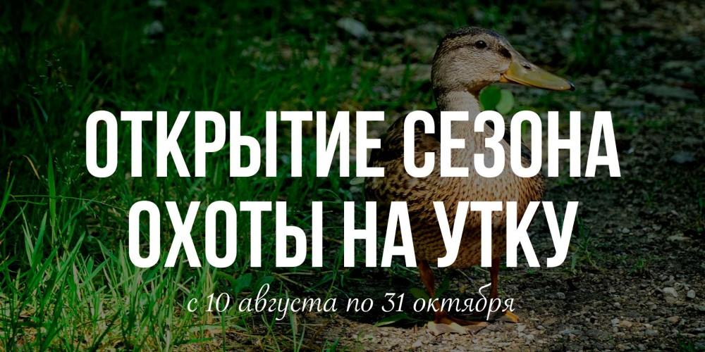 http://vlesu.ru/wp-content/uploads/2019/08/otkritie-ohoti-na-utku-2019-news.jpg