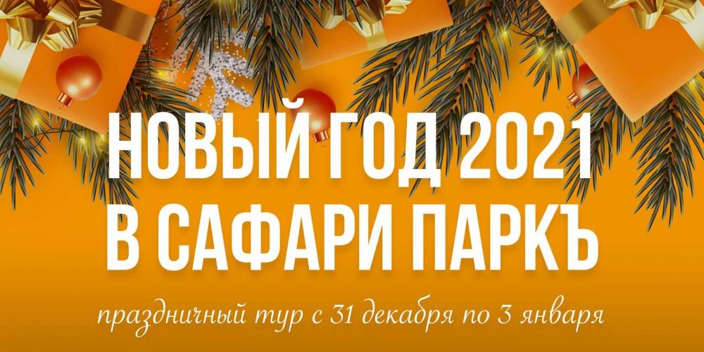 http://vlesu.ru/wp-content/uploads/2020/09/NoviyGod-2021-news.jpg