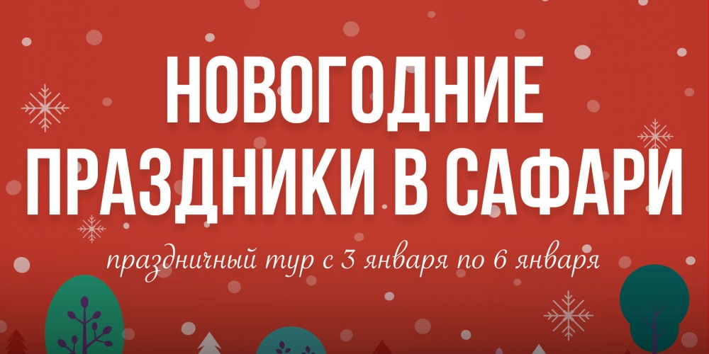 http://vlesu.ru/wp-content/uploads/2020/09/NovogodniePrazdniki-2021-news.jpg
