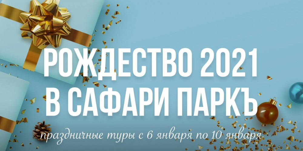 http://vlesu.ru/wp-content/uploads/2020/09/Rojdestvo-2021-news.jpg