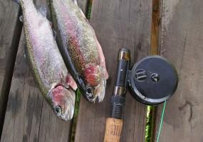 Заметки рыбака